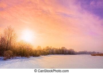Zima lesní krajina