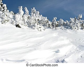 Zimní sněžení